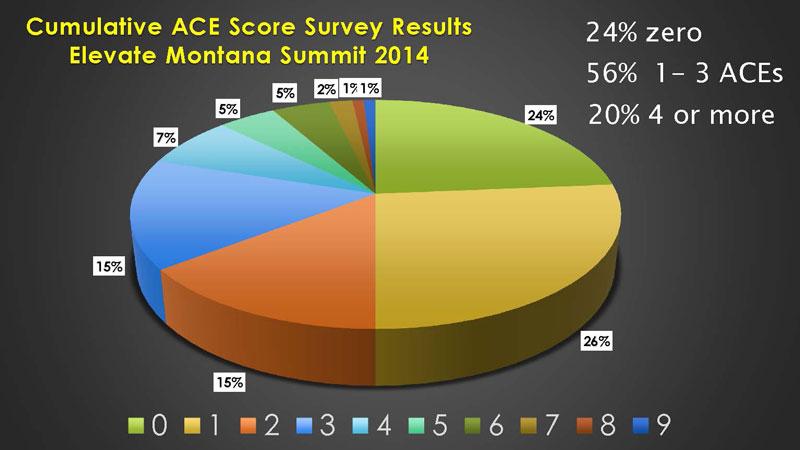 2014-ace-survey-results-sm